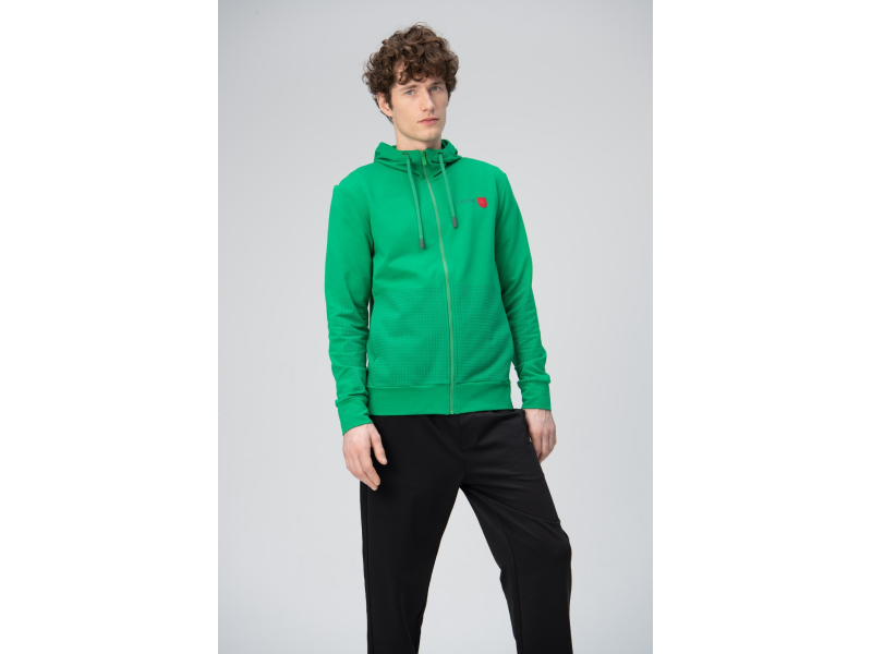 AUDIMAS Atsegamas  džemperis su gobtuvu 20LT-408 Jolly Green